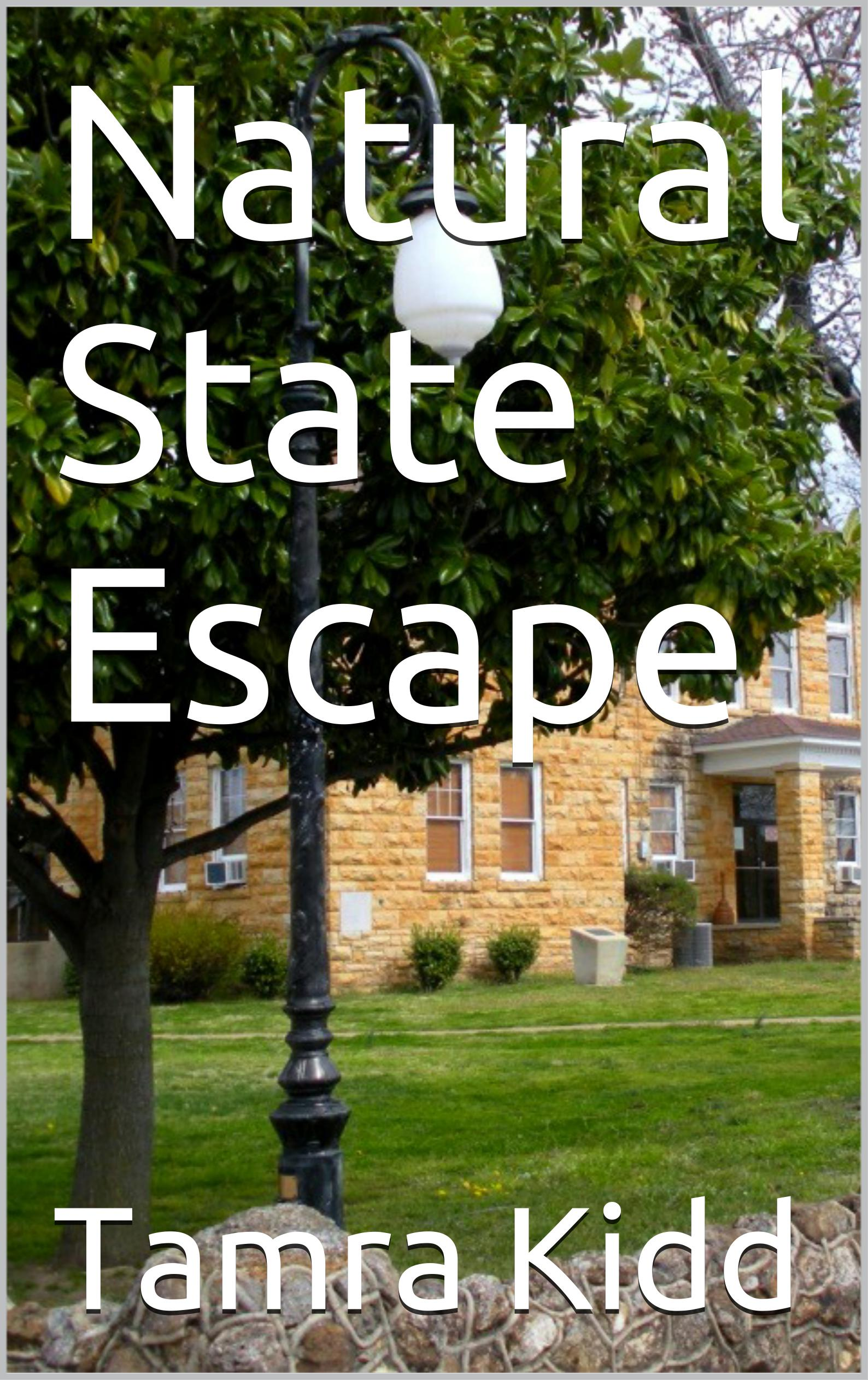 Natural State Escape Book Cover
