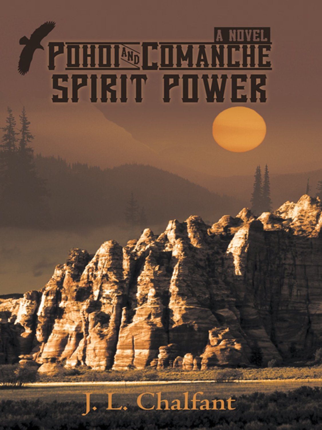 Pohoi and Comanche Spirit Power Book Cover