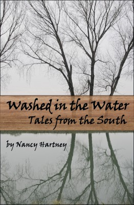 Washed In The Water: Tales from the South
