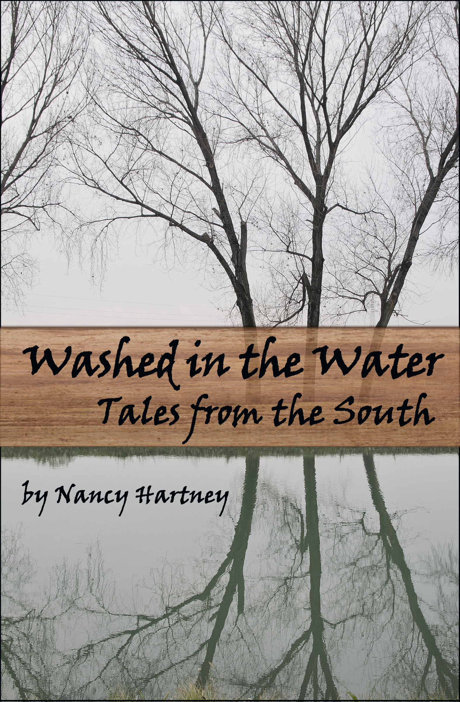 Washed In The Water: Tales From The South Book Cover