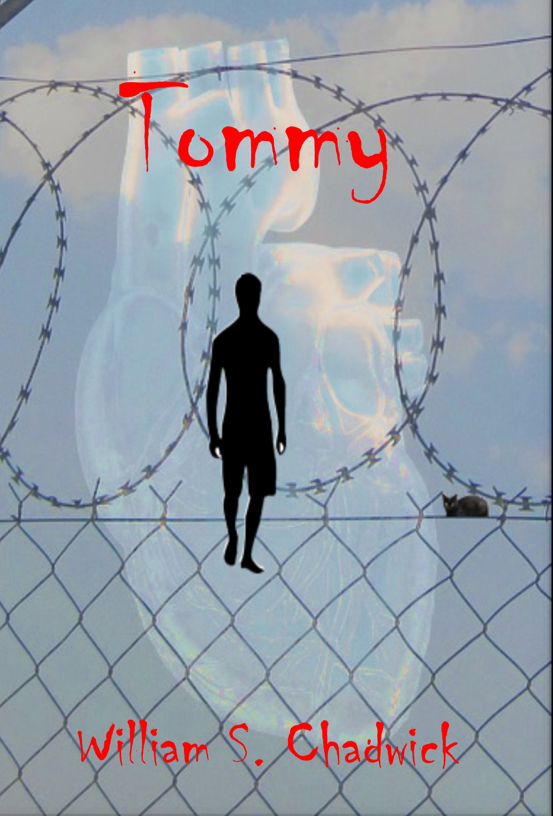 Tommy Book Cover