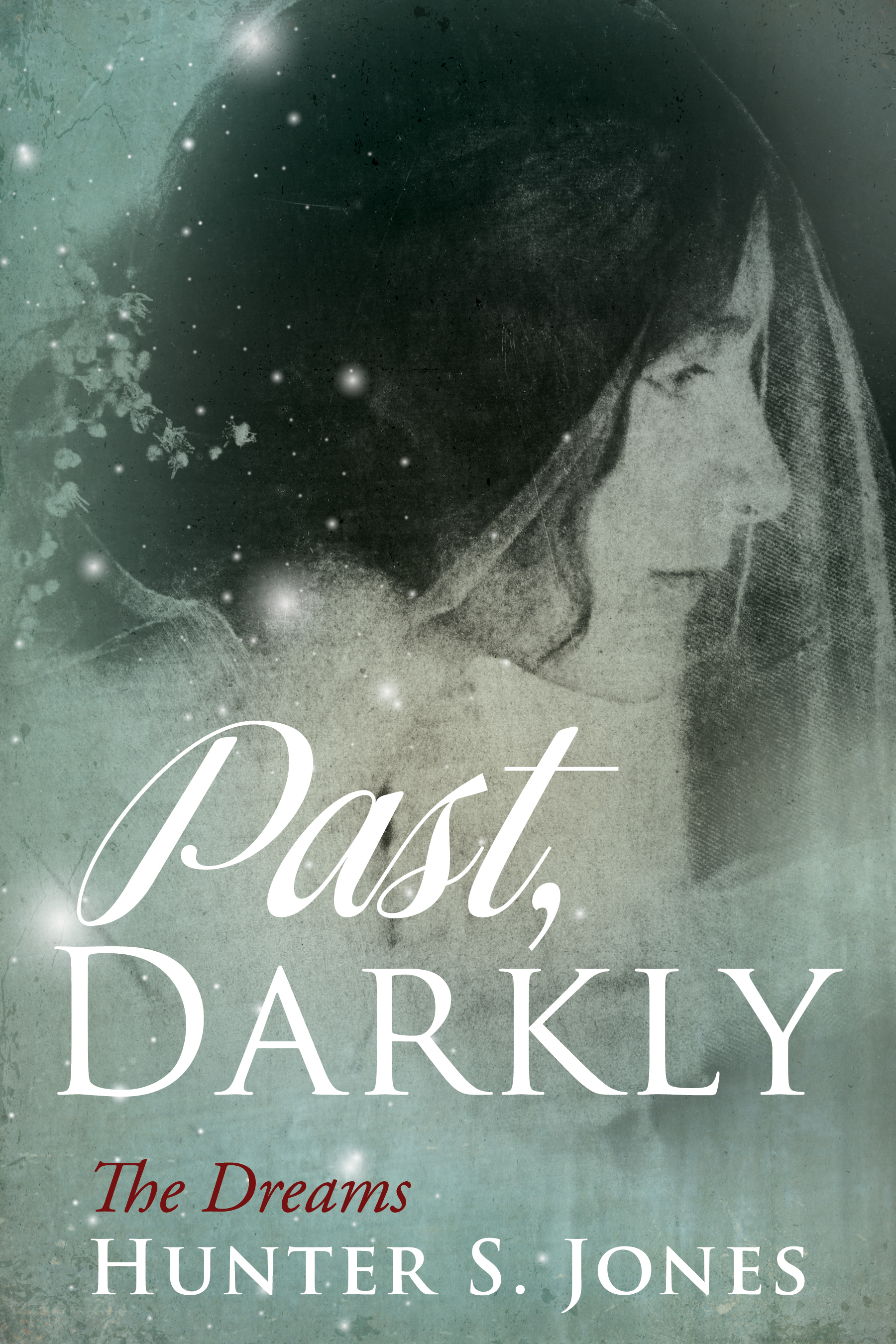 Past, Darkly Book Cover